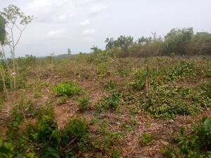 Deed of Assignment Family Receipt | Land & Plots For Sale for sale in Ikorodu, Agbowa