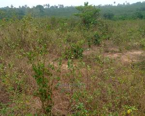Survey and Family Receipt | Land & Plots For Sale for sale in Ogun State, Odeda
