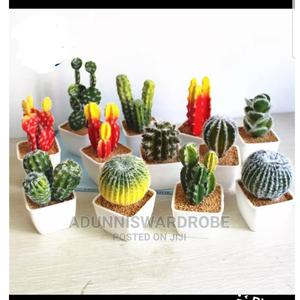 Artificial Cactus Plant   Home Accessories for sale in Lagos State, Ikeja
