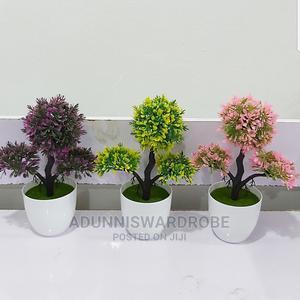 Potted Flowers   Home Accessories for sale in Lagos State, Ikeja