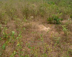 Deed Of Assignment And Survey | Land & Plots For Sale for sale in Ogun State, Ado-Odo/Ota
