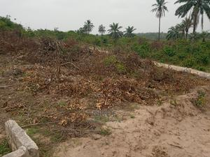 Afara Plot of Land | Land & Plots For Sale for sale in Abia State, Umuahia