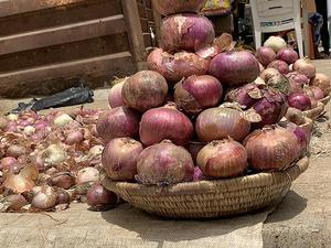 Custard Bucket of Onion for Sale | Meals & Drinks for sale in Rivers State, Obio-Akpor