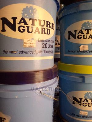 Nature Paint   Building Materials for sale in Lagos State, Alimosho