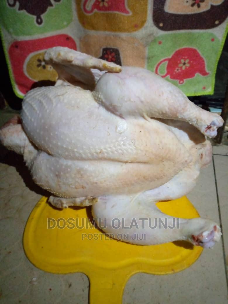 Broiler Meat (Chicken)