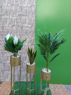 Gold Planters With Plants   Garden for sale in Lagos State, Surulere