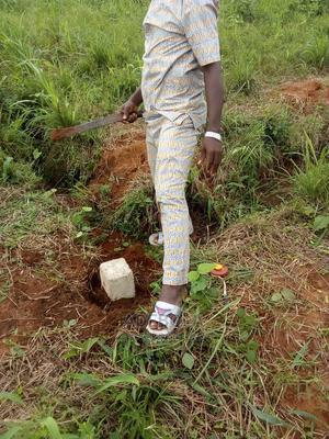 Dry Plot(S) of Land for Sale | Land & Plots For Sale for sale in Ogun State, Sagamu
