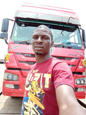 Tipper Truck Driver | Driver CVs for sale in Ondo State, Akure