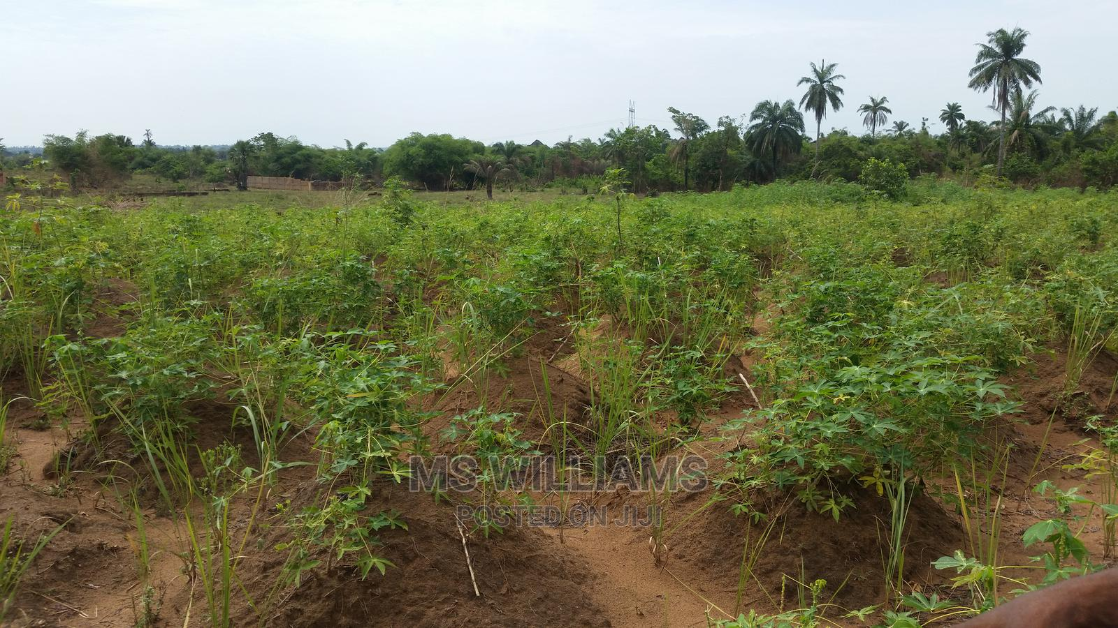One Plot (1+) Plot of Land for Sale at Amansea   Land & Plots For Sale for sale in Awka, Anambra State, Nigeria