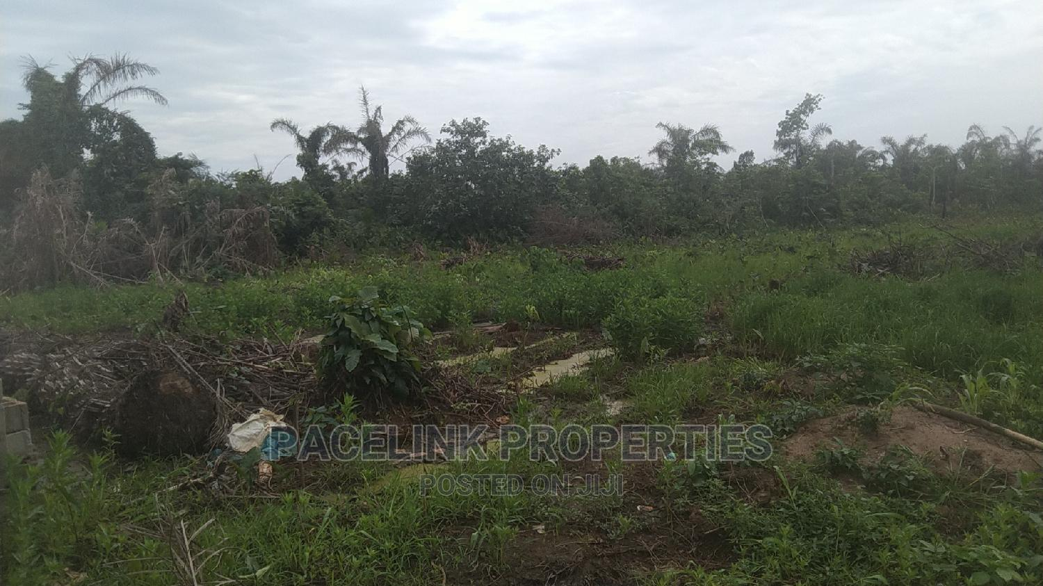 Cheap Half Plot of Land in a Good Neighborhood at Itele | Land & Plots For Sale for sale in Ayobo, Ipaja, Nigeria