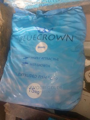 Blue Grown Fish Food   Fish for sale in Lagos State, Surulere