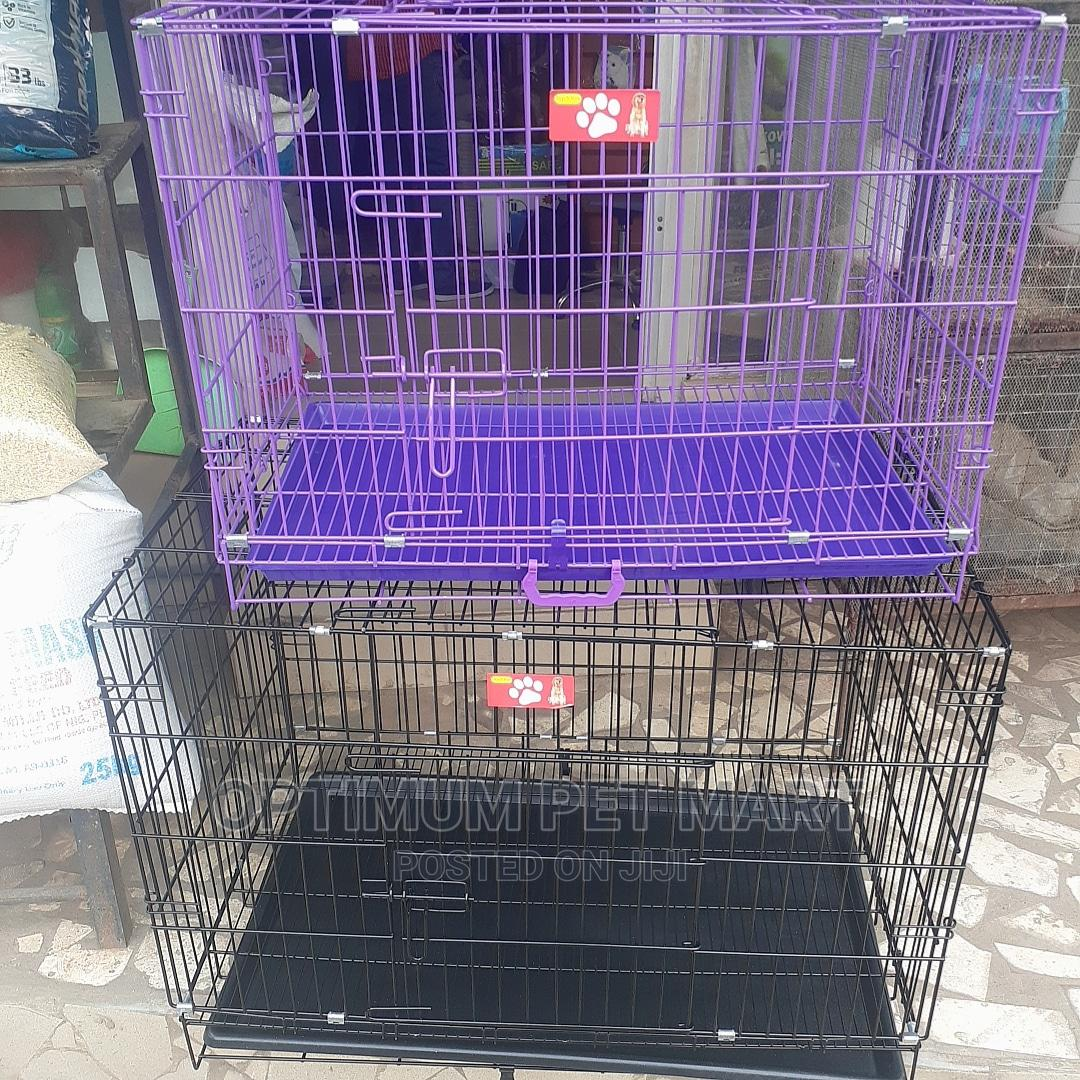 Dog Collapsible Cage