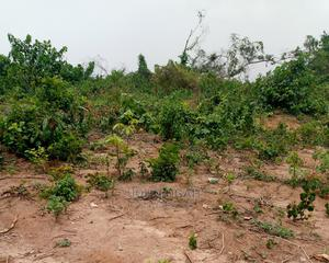 Registered Survey and Family Receipt | Land & Plots For Sale for sale in Lagos State, Ikorodu