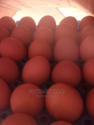 Fresh Egg From Poultry   Meals & Drinks for sale in Oyo State, Akinyele