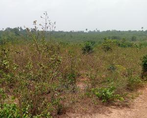 Deed of Assignment and Receipt   Land & Plots For Sale for sale in Imo State, Orlu