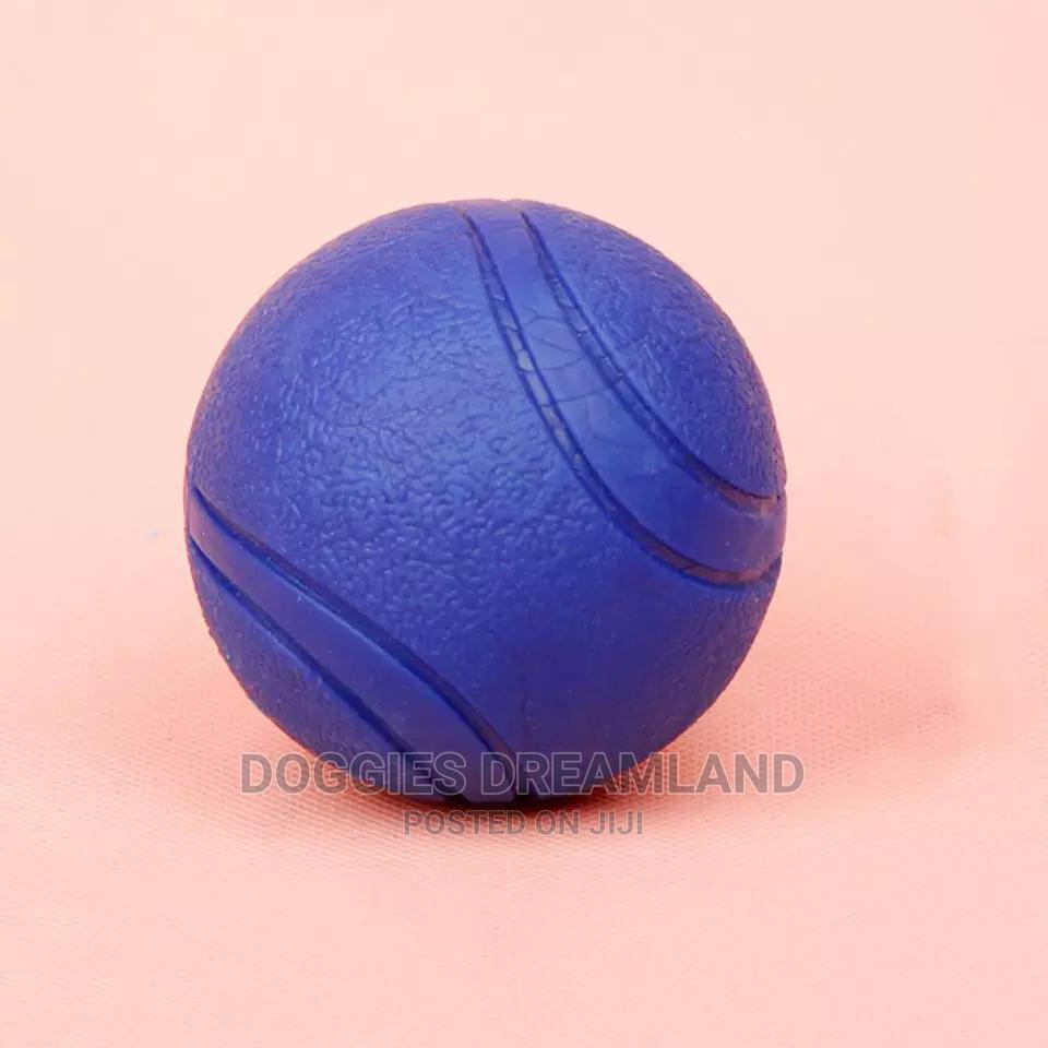 Dog Training Balls | Pet's Accessories for sale in Kubwa, Abuja (FCT) State, Nigeria