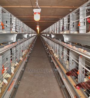 China Battery Cage   Farm Machinery & Equipment for sale in Ogun State, Ado-Odo/Ota