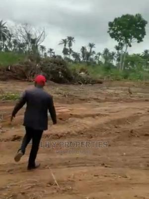 Plots of Estate Land for Sale in Umuagwu Owerri Imo State | Land & Plots For Sale for sale in Imo State, Owerri