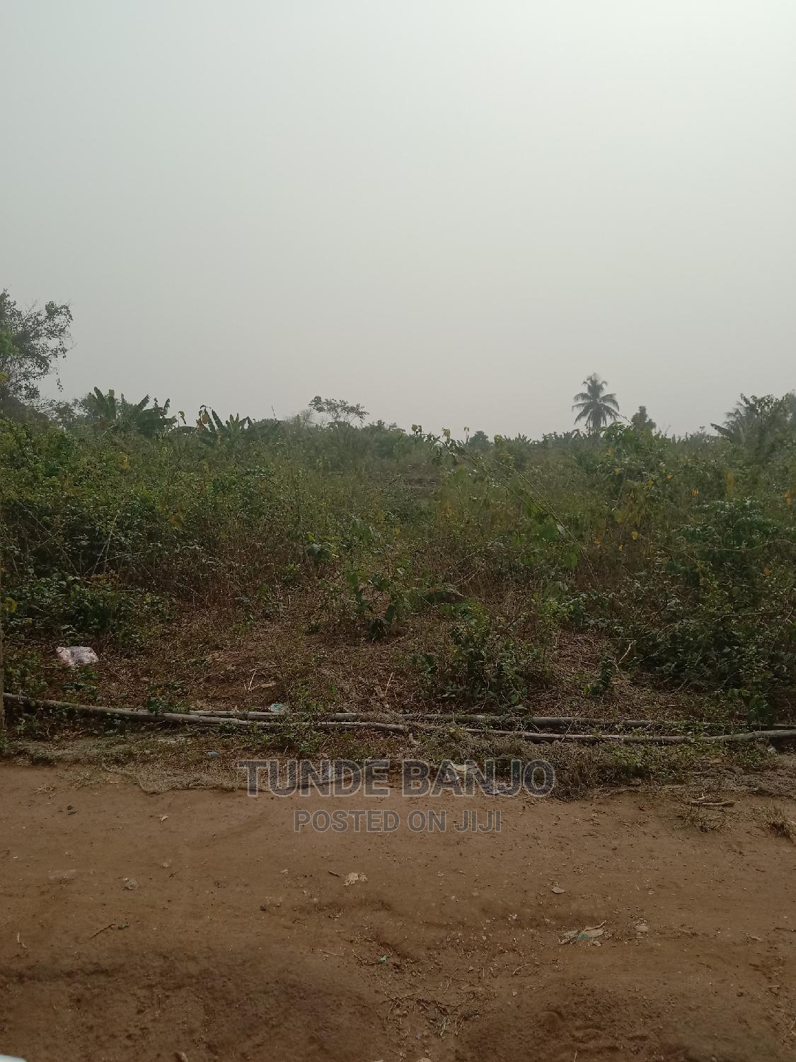 Archive: Farmland For Sale Across Ogun And Oyo State.