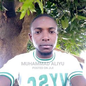 Mr Muhammad Nazir Aliyu   Technology CVs for sale in Nasarawa State, Keffi