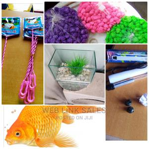 Mini Aquarium and Accessories   Fish for sale in Lagos State, Surulere