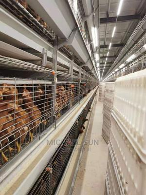 China Battery Cage   Farm Machinery & Equipment for sale in Lagos State, Ikeja