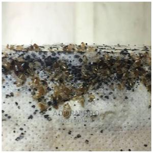 Bed Bug Extermination and Fumigation Services | Cleaning Services for sale in Lagos State, Ikotun/Igando