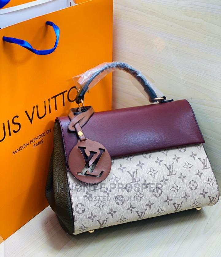 Louis Vuitton Designer Hand Bag