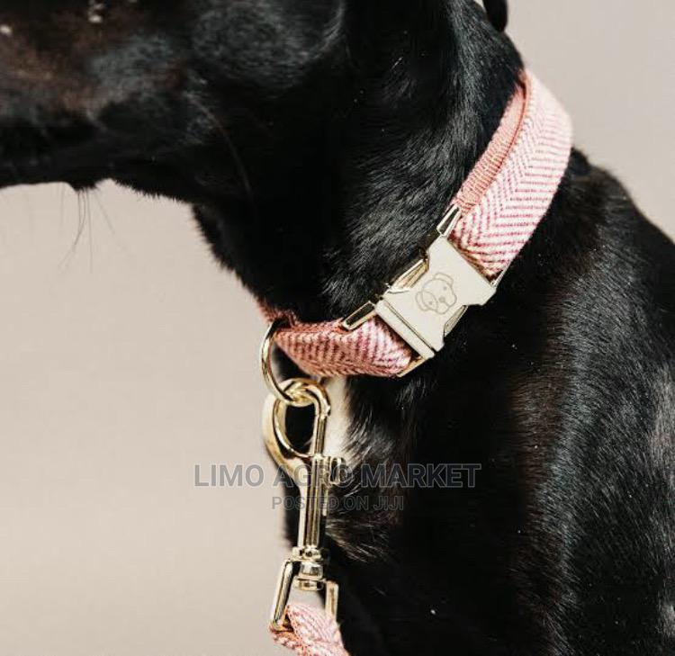 Pet Accessories | Pet's Accessories for sale in Asokoro, Abuja (FCT) State, Nigeria