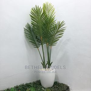 The Palm Plant For Sale   Garden for sale in Lagos State, Ikeja