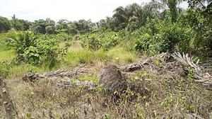 Full Plot Of Land At Itele | Land & Plots For Sale for sale in Ipaja, Ipaja / Ipaja