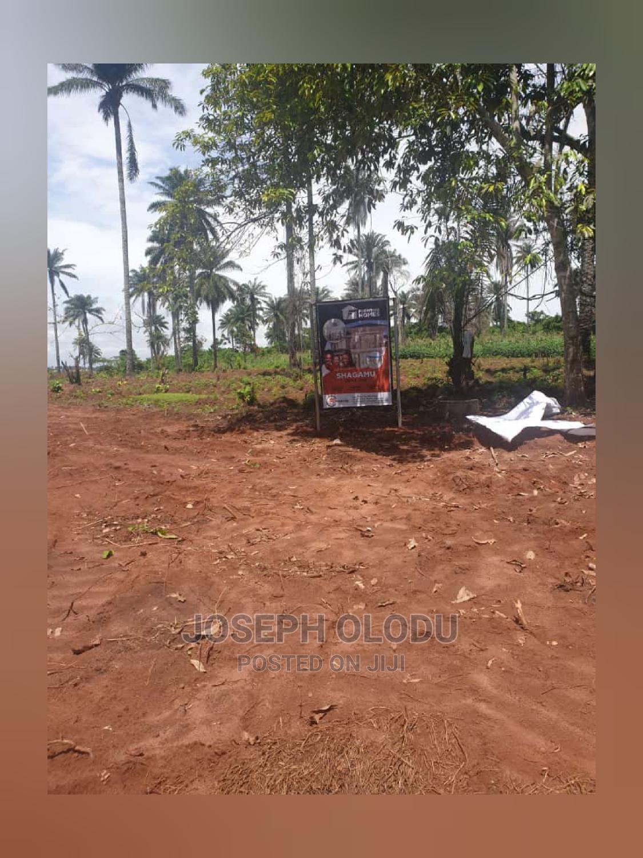 Archive: Land for Sale at Shagamu, Ogun State