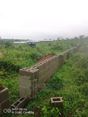Land for Rent for Farming/ Poultry | Land & Plots for Rent for sale in Ogun State, Ado-Odo/Ota