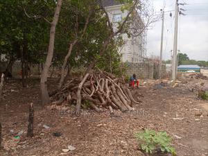 1117sqm Residential Land for Sale in Dakibiyu | Land & Plots For Sale for sale in Abuja (FCT) State, Dakibiyu