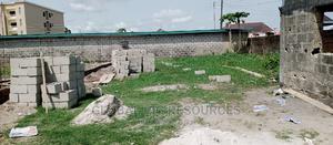 For Sale Corner Piece Plot of Land, United Estate,Sangotedo | Land & Plots For Sale for sale in Ajah, Sangotedo