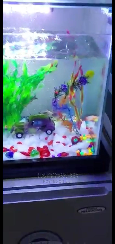 Table Stand Aquarium