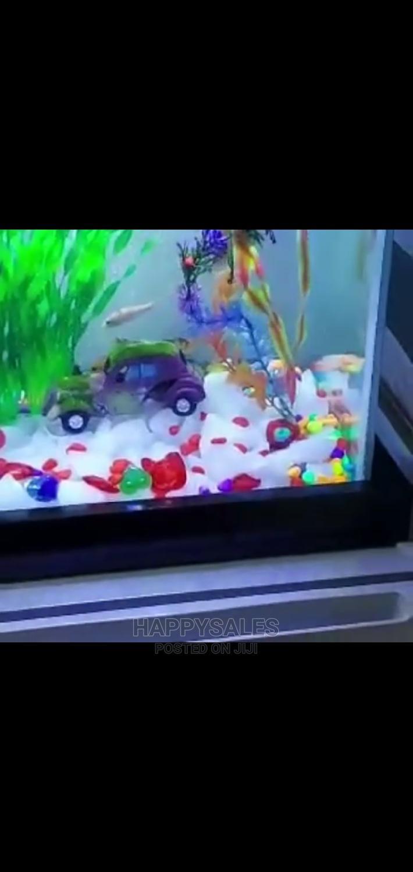 Table Stand Aquarium | Pet's Accessories for sale in Surulere, Lagos State, Nigeria
