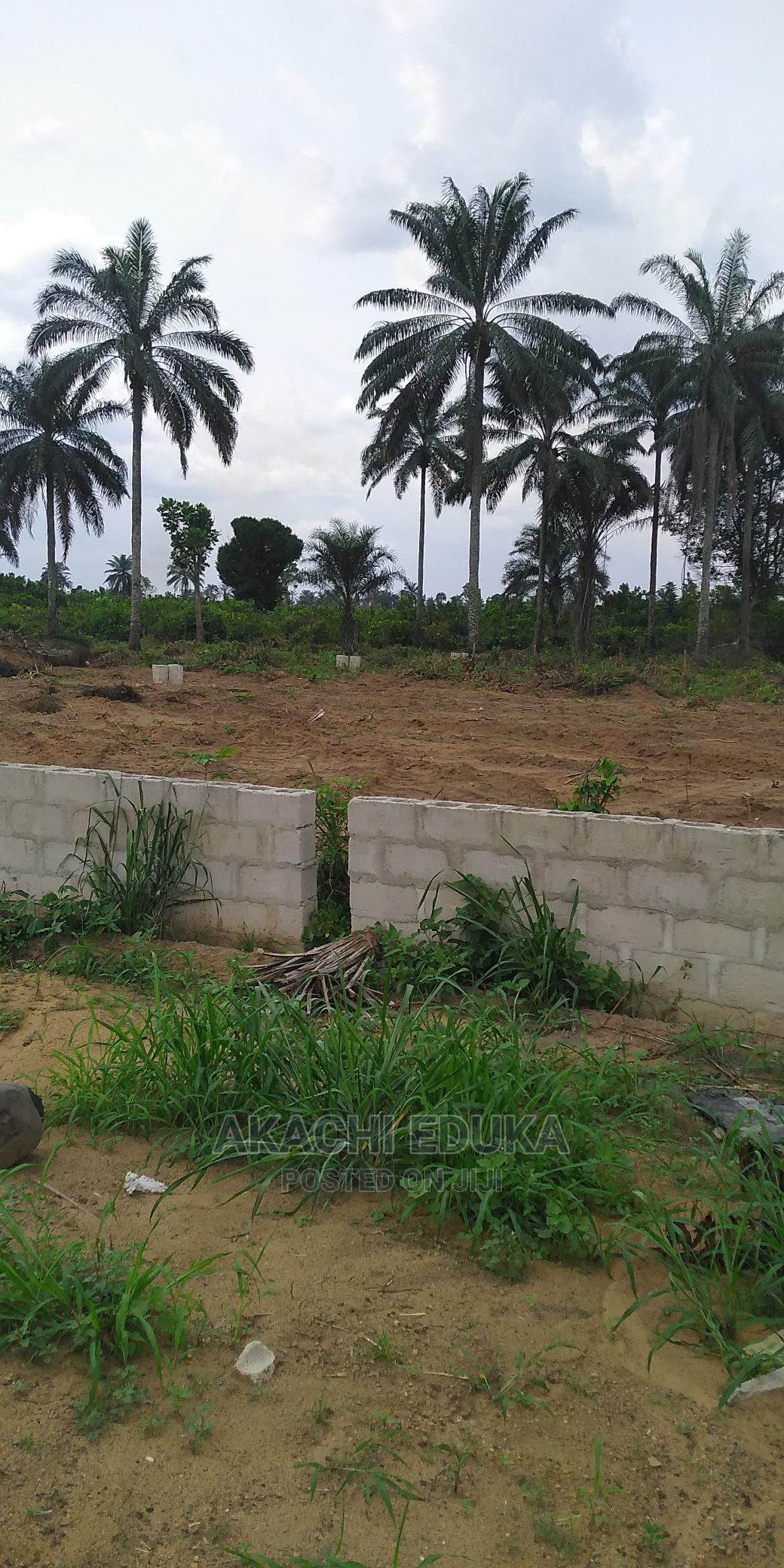 Very Affordable Lush City Estate Land by Cedarwood Aba. | Land & Plots For Sale for sale in Aba North, Abia State, Nigeria