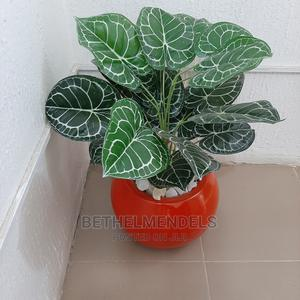 Buy Extotic Artificial Mini Potted Plant in Lagos Ikeja | Garden for sale in Lagos State, Ikeja