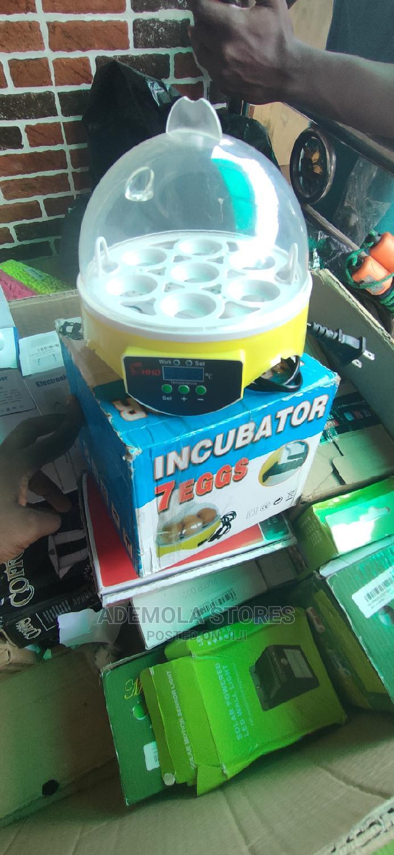 Archive: 7 Eggs Mini Digital Egg Incubator Hatcher