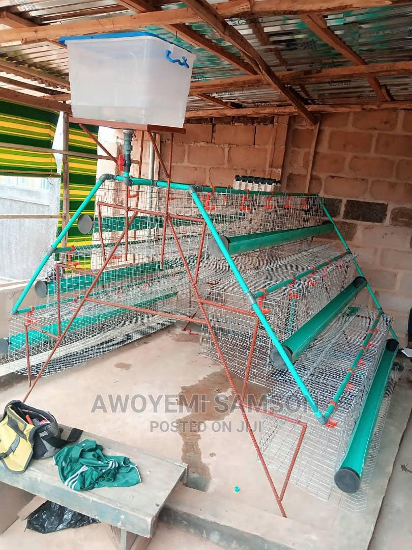 Archive: Poultry Cage