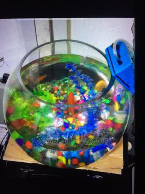 Well Set Fish Bowl With an Aerator | Fish for sale in Oyo State, Ibadan