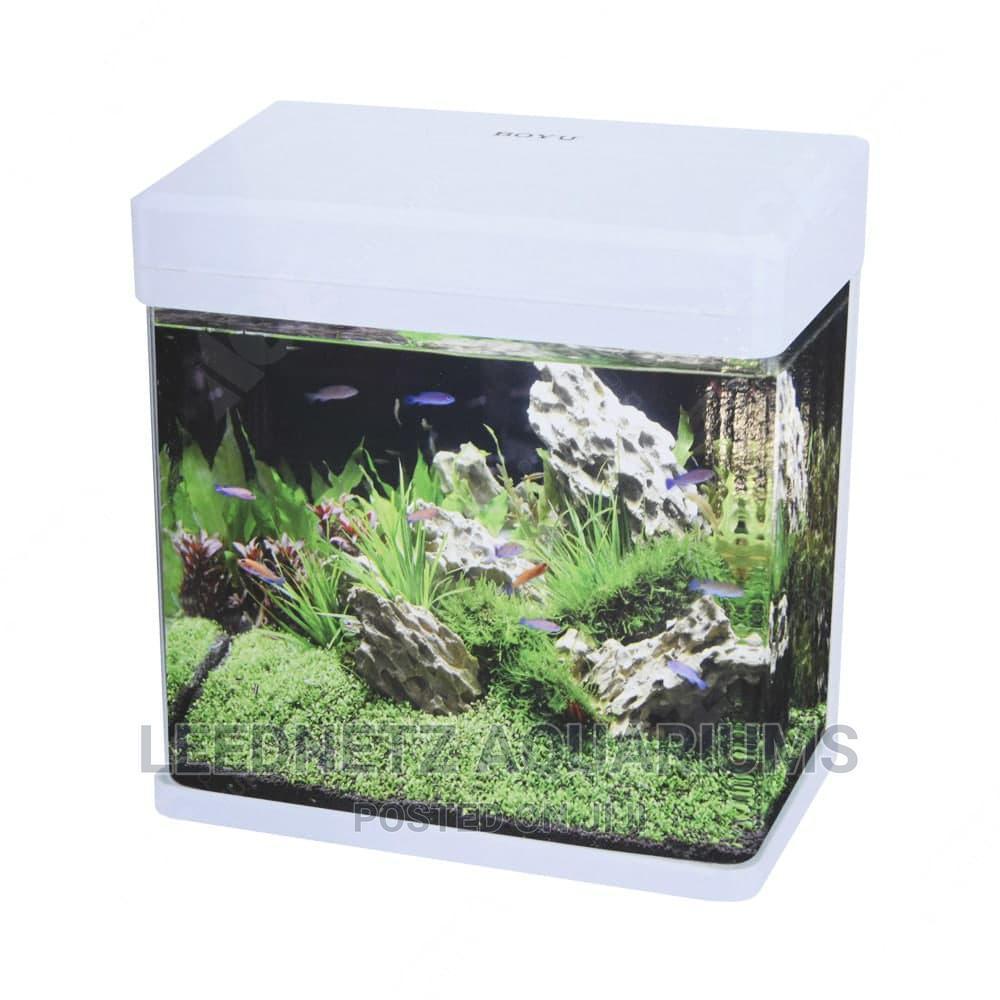 Boyu Nano Aquarium
