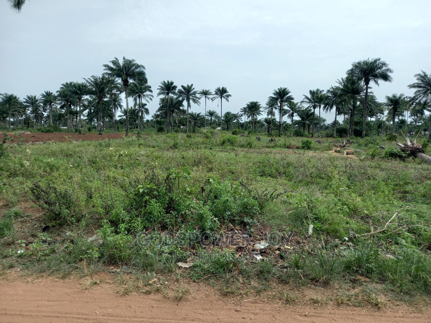 Plots of Dry Land for Urgent Sales | Land & Plots For Sale for sale in Badagry, Lagos State, Nigeria