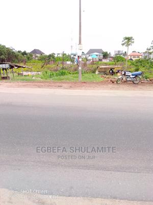 Accre of Land for Facing Major Road | Land & Plots For Sale for sale in Ojo, Okokomaiko