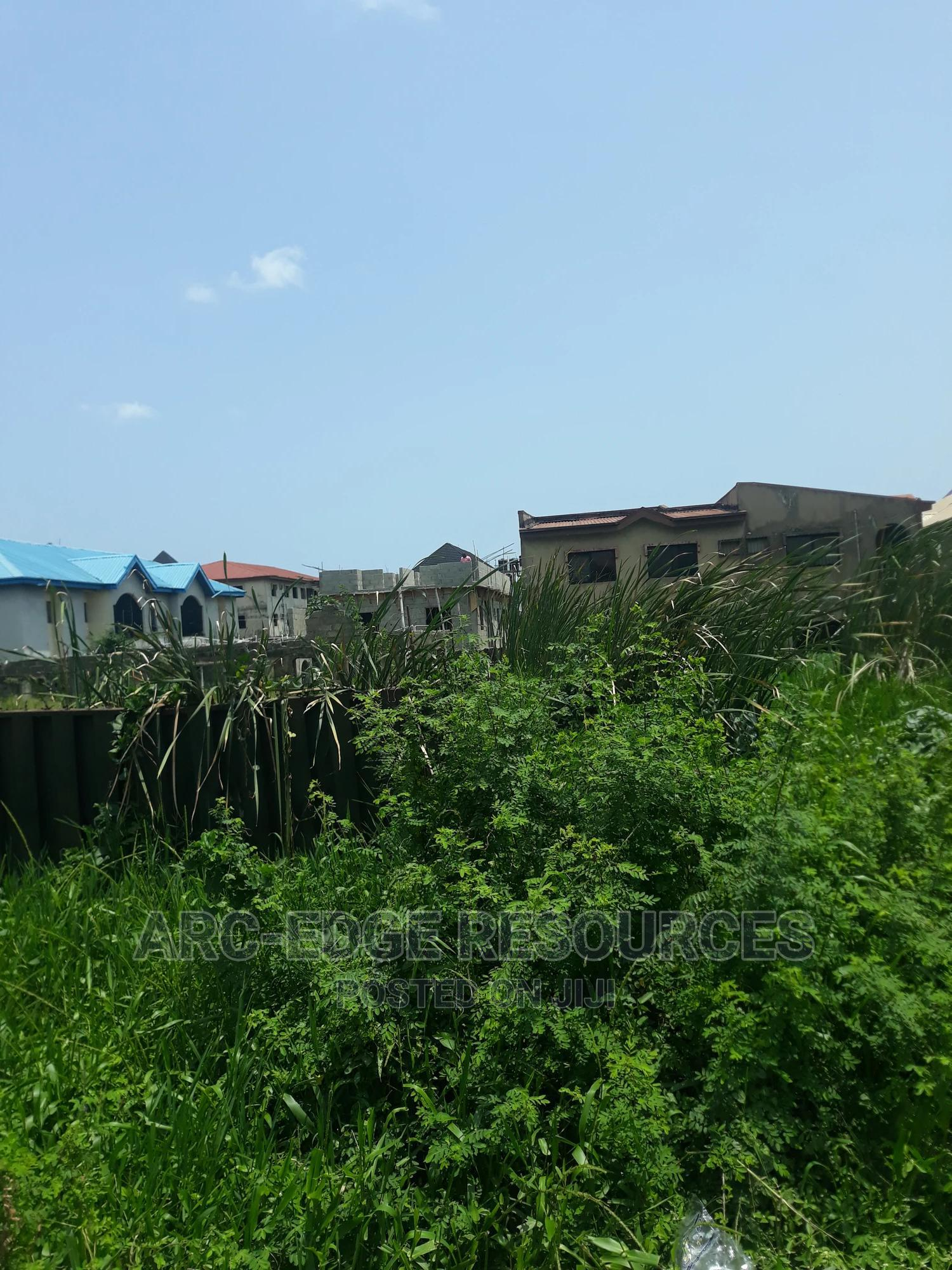 2plot of Genuine Land for Both Commercial Residential Use | Land & Plots For Sale for sale in Ago Palace, Isolo, Nigeria