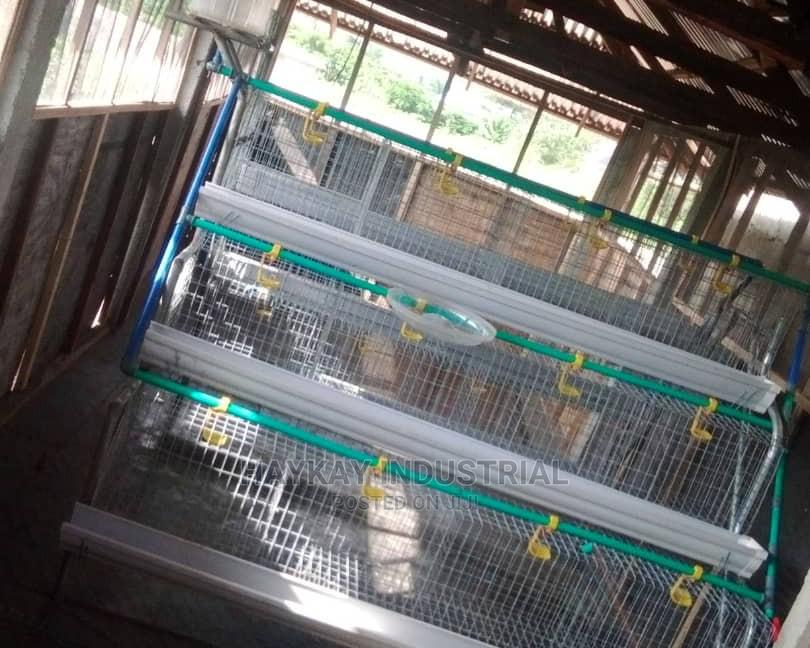 Archive: #Poultry Cage