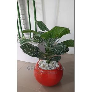 Impressive Mini Potted Plant Best for Office Decor | Garden for sale in Lagos State, Ikeja