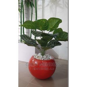 Impressive Mini Potted Plant for Hospital Decor | Garden for sale in Lagos State, Ikeja