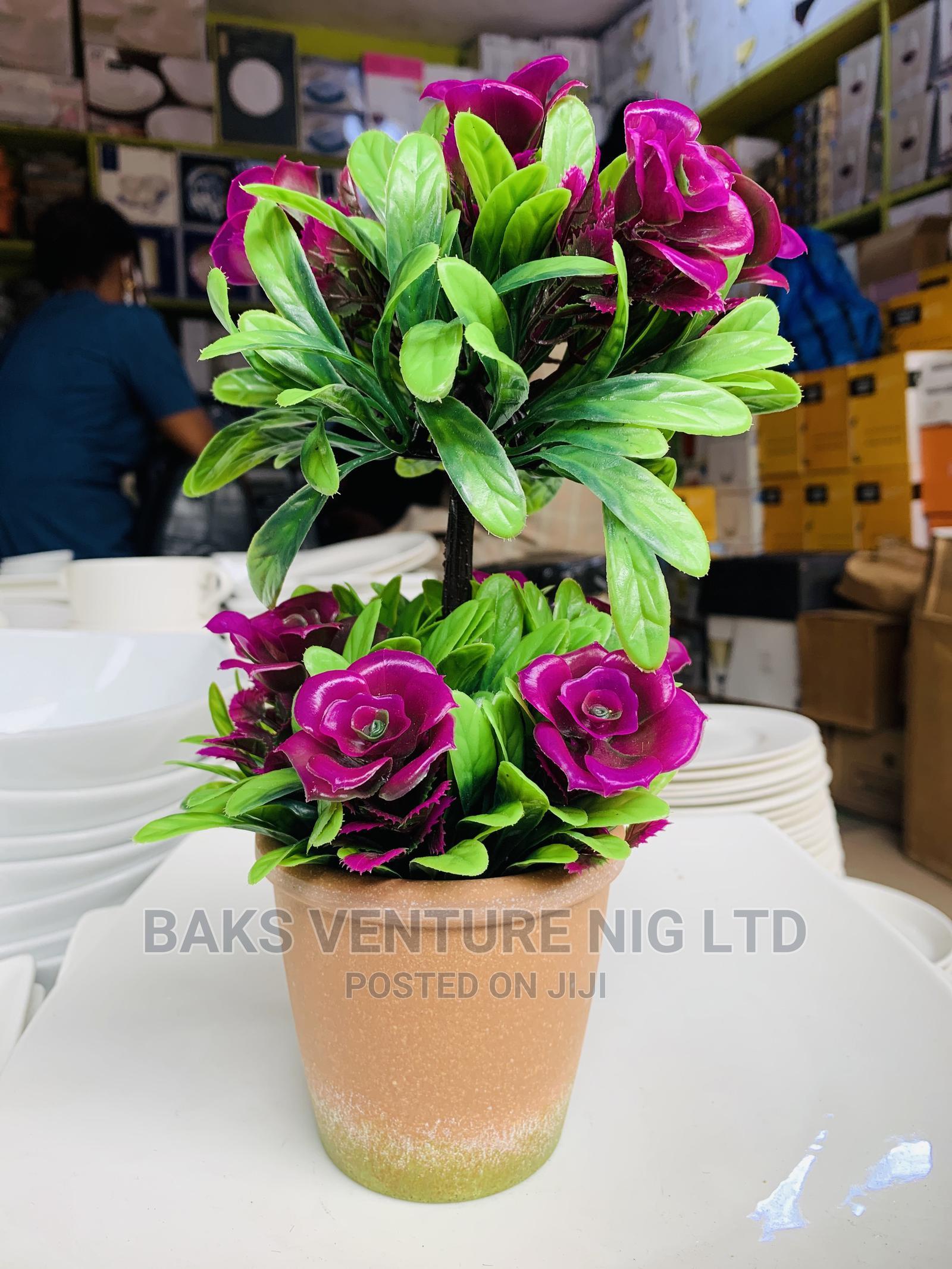 Flower Vase   Garden for sale in Lagos Island (Eko), Lagos State, Nigeria